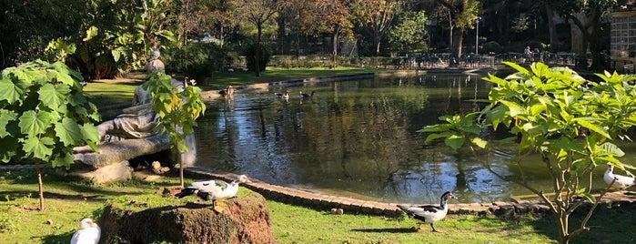 Coreto do Jardim da Estrela is one of Locais curtidos por Francisco.