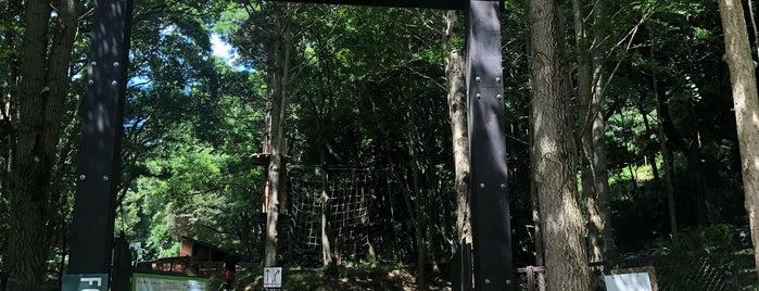 フォレストアドベンチャー・ターザニア is one of สถานที่ที่ Hideo ถูกใจ.