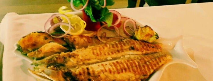 Ankara Balık