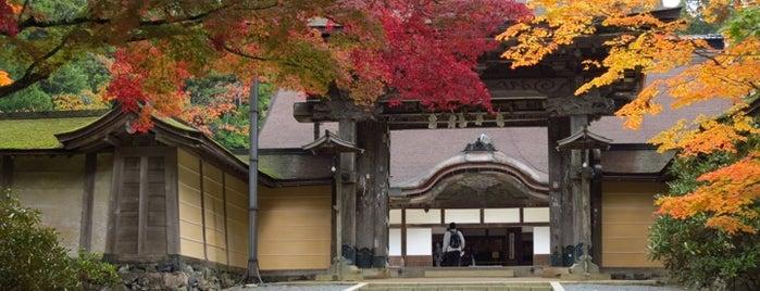 Koyasan Kongobuji Temple is one of Japan.