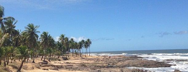 Costa do Sauípe is one of Tempat yang Disimpan Camila.