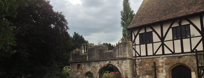 Museum Gardens is one of UK unseen.