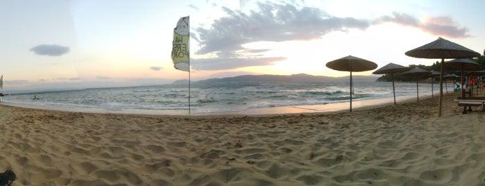 Agia Eleni Beach is one of Tempat yang Disukai AGG.