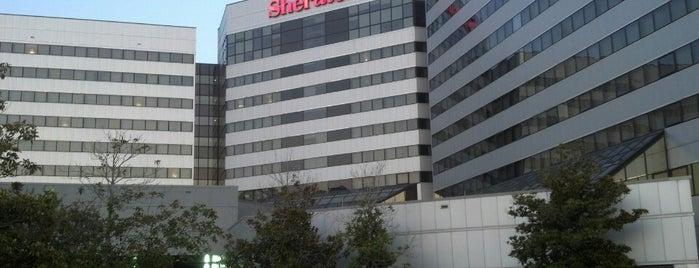 Sheraton North Houston at George Bush Intercontinental is one of Hoteles visitados.