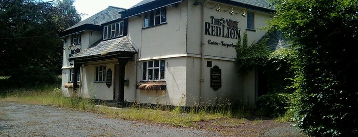 Red Lion Little Budworth is one of Paulさんのお気に入りスポット.