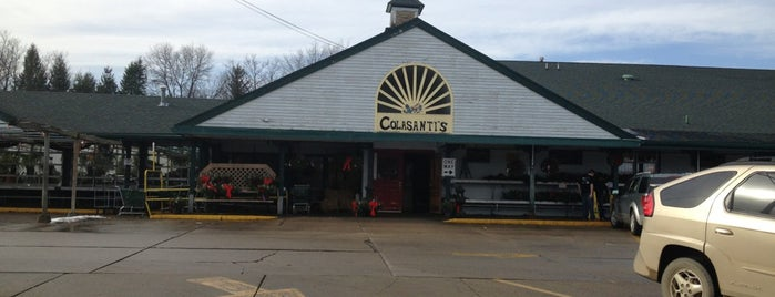 Colasanti's Market is one of Lugares favoritos de Cindy.