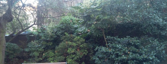 Ridgmount Gardens is one of Locais curtidos por Pelin.