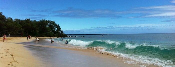 Big Beach is one of Hawaii 2014 LenTom.