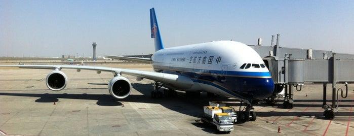 Beijing Capital International Airport (PEK) is one of สนามบินนานาชาติ (1).