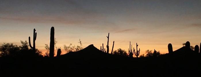 Legend Trail Golf Club is one of Arizona Golf Courses.