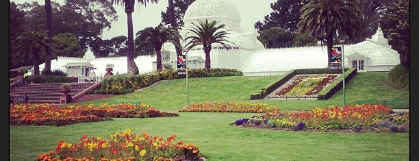 Golden Gate Park is one of Bay Area.