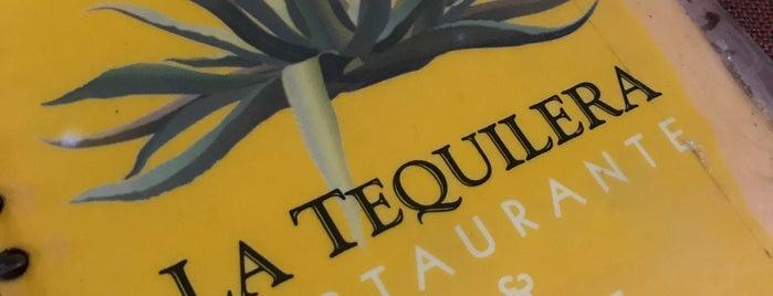 La Tequilera is one of Fernando 님이 좋아한 장소.