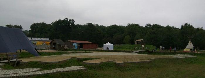 Park Dębnicki is one of Lugares favoritos de Karolina.