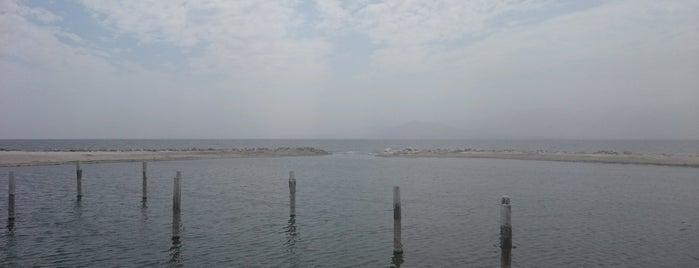 Salton Sea!