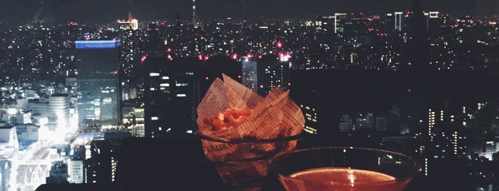 New York Bar is one of Travel Guide to Tokyo.