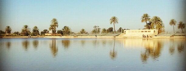 Les Jardins de la Menara is one of Marrakech.