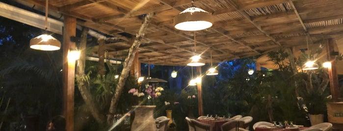 Jardin Nebulosa is one of Locais curtidos por Carlos.
