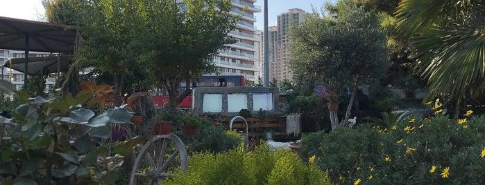 Ziyade Et Balık Bahçeşehir is one of Locais salvos de Abomutaz Alrasheed.