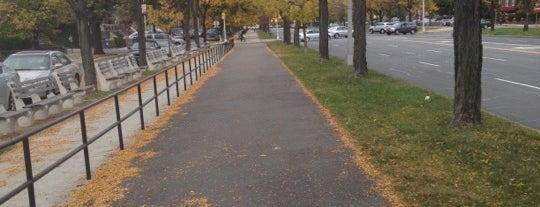 Ocean Parkway Bike Path is one of Orte, die Chaya gefallen.