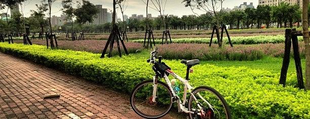 凹子底森林公園 is one of Kaohsiung.