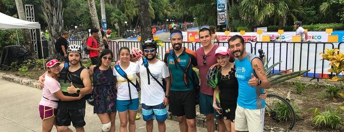 Ironman Cozumel is one of สถานที่ที่ Chowell ถูกใจ.
