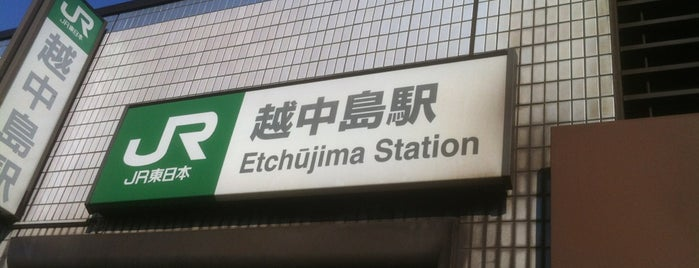 Etchūjima Station is one of JR 미나미간토지방역 (JR 南関東地方の駅).