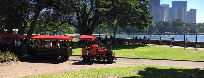 Sydney Spring Walk - Botanical Garden is one of Locais curtidos por Virgi.