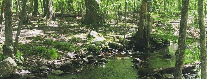 Cascade Park is one of Orte, die Crystal gefallen.