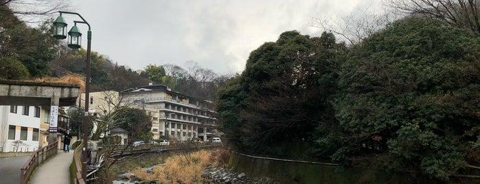 Hakone is one of Orte, die Aislinn gefallen.