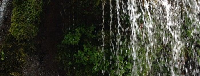 吐竜の滝 is one of [todo] kobuchizawa | 小淵沢.
