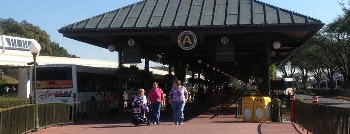 Magic Kingdom Bus Stop is one of Posti che sono piaciuti a Lindsaye.