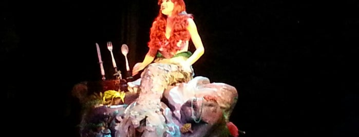 Voyage of The Little Mermaid is one of Florida.