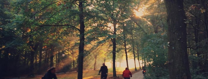 Tiergarten is one of Berlin to-do list.
