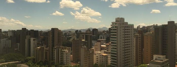 Mercure Belo Horizonte Lourdes is one of Orte, die Billy gefallen.