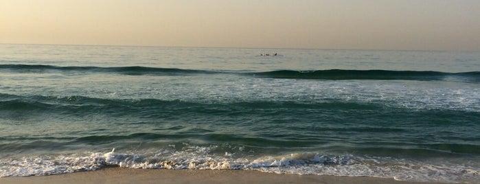 Praia do Pepê is one of Orte, die Billy gefallen.
