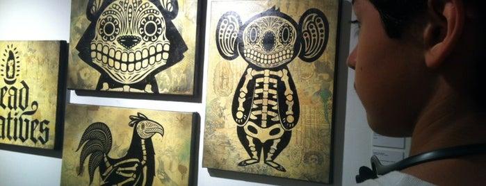 Gallista Gallery is one of San Antonio.
