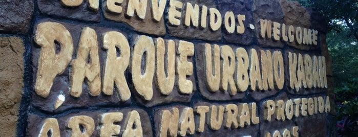 Parque Urbano Kabah is one of Cancún y La Riviera Maya.