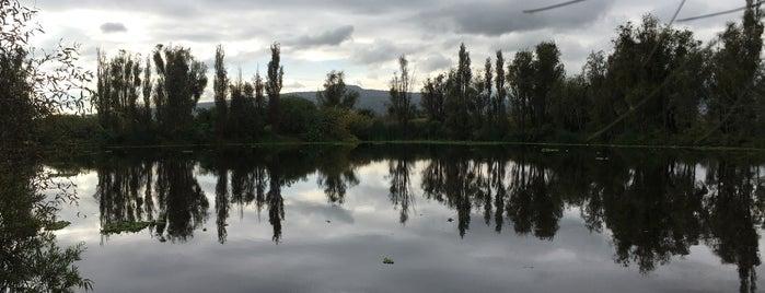 """Área Natural Protegida """"Ejidos de Xochimilco y San Gregorio Atlapulco"""" is one of Karla 님이 좋아한 장소."""