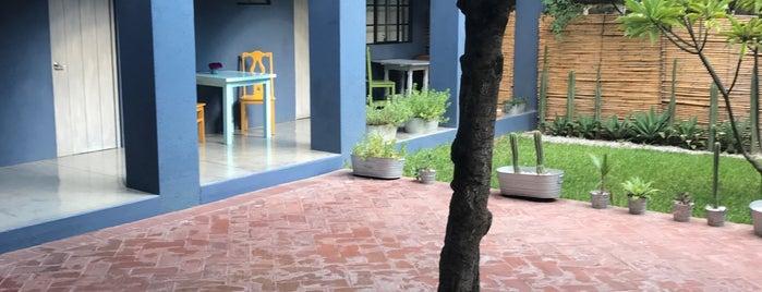 La Betulia Bed and Breakfast is one of Oaxaca.
