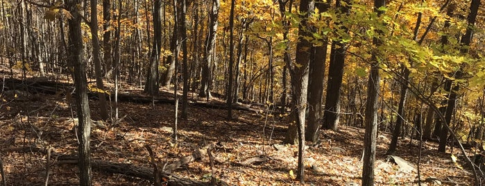 Old Appalachian Trail is one of Charlottesville.