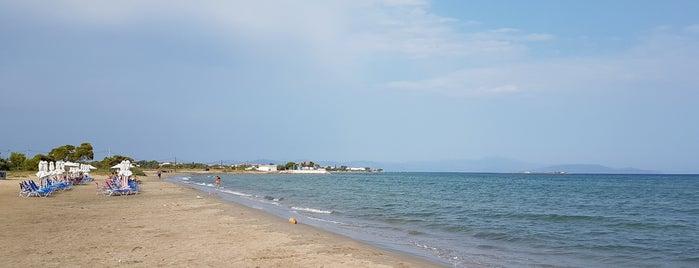 Trolley Beach is one of Locais salvos de Barış.