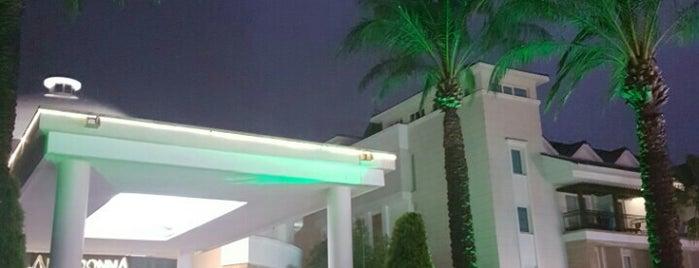 Alva Donna Beach Resort Comfort is one of Iona'nın Beğendiği Mekanlar.