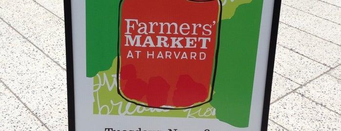 Harvard Farmers' Market is one of Gespeicherte Orte von Sara.
