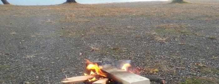 西湖自由キャンプ場 is one of Favorite Campground.