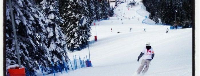 Ilgaz Kayak Merkezi is one of TAVSİYE DERLEMELERİ.