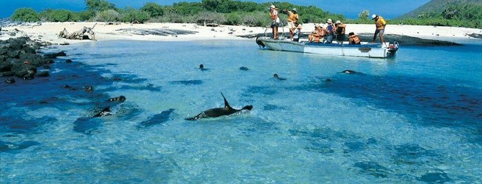 Archipiélago de Galápagos is one of World Heritage Sites List.
