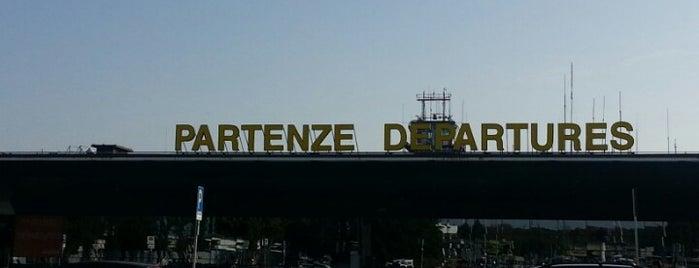 Terminal 2 is one of Orte, die Polina gefallen.