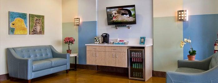 Animal Oasis Veterinary Hospital is one of Lieux qui ont plu à Dan.