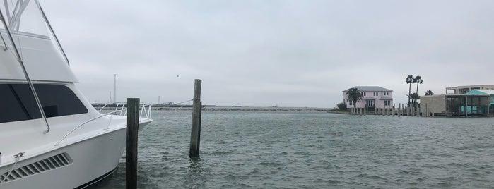 Fisherman's Wharf is one of Tadashi'nin Beğendiği Mekanlar.