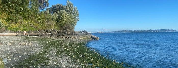 Magnolia Tidelands Park is one of Seattle's 400+ Parks [Part 3].